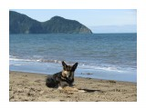 Сторож у моря Фотограф: vikirin  Просмотров: 4213 Комментариев: 1
