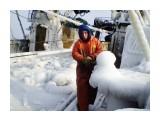 Обросли льдом    Фотограф: 7388PetVladVik  Просмотров: 5934 Комментариев: 0
