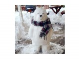 Название: Снеговедь или медвеговик? :)) Фотоальбом: Хахашечкой пахнуло Категория: Разное  Просмотров: 174 Комментариев: 0