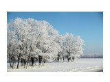 Название: зима Фотоальбом: природа Категория: Природа  Время съемки/редактирования: 2016:01:07 22:14:58 Фотокамера: Canon - Canon EOS 600D Диафрагма: f/6.3 Выдержка: 1/800 Фокусное расстояние: 62/1    Просмотров: 52 Комментариев: 1