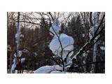 DSC05875 Фотограф: vikirin  Просмотров: 625 Комментариев: 0
