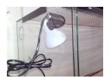 IMG-20170215-WA0035 Терра для игуаны! габариты 1000х500х500. двойная вентиляция, открывающиеся двери, замки на дверях, светильник для обогрева.  Просмотров: 8 Комментариев: