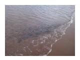рыбка Фотограф: 0001 (2).jpg  Просмотров: 2150 Комментариев: 0