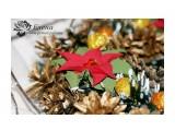"""Рождественский венок """"Пуансетия""""  Просмотров: 512 Комментариев: 0"""