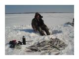 рыбалка на Нельме рыбалка на Нельме  Просмотров: 3982 Комментариев: