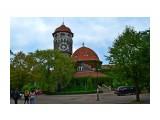 Светлогорск( бывшийРаушен)-башня водолечебницы  Просмотров: 43 Комментариев: