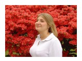 flowers  Просмотров: 735 Комментариев: