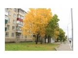 город  Просмотров: 369 Комментариев: 0