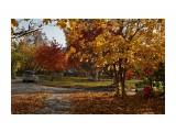 Осенние прогулки (2) Южно-Сахалинск  Просмотров: 1823 Комментариев: