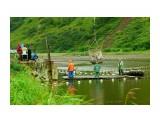 руз на реке Тихая Фотограф: В.Дейкин  Просмотров: 1790 Комментариев: 1