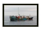 ВОСТОК в Татарском проливе. (ИМО 8504791, CS UBZG7) Фотограф: 7388PetVladVik  Просмотров: 2686 Комментариев: 2