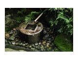 сады киото Фотограф: marka  Просмотров: 551 Комментариев: 0
