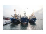 Порт Невельск.    (Слева направо Васан  Матуа,  Виданово) Фотограф: 7388PetVladVik  Просмотров: 1317 Комментариев: 0