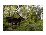 сады киото Фотограф: © marka  Просмотров: 1043 Комментариев: 4