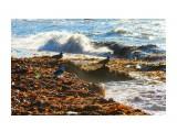На берегу Татарского пролива... Фотограф: 7388PetVladVik  Просмотров: 3172 Комментариев: 2