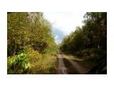 DSC04835 Фотограф: vikirin  Просмотров: 559 Комментариев: 0