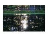Название: DSC04248 Фотоальбом: 2015 09 Озеро в Славах Категория: Природа Фотограф: vikirin  Время съемки/редактирования: 2015:09:11 12:30:27 Фотокамера: SONY - NEX-5T Диафрагма: f/5.6 Выдержка: 1/80 Фокусное расстояние: 400/10    Просмотров: 717 Комментариев: 0