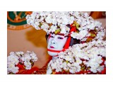 2008.11.28  Фотограф: marka  Просмотров: 1225 Комментариев: 0