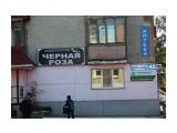 Мы всегда рядом (Южно-Сахалинск) Фотограф: 7388PetVladVik  Просмотров: 3070 Комментариев: 2