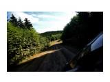 DSC00811 Фотограф: vikirin  Просмотров: 138 Комментариев: 0
