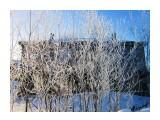 Деревья Фотограф: Alexei1903  Просмотров: 1242 Комментариев: 0