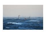 Северо-корейское промысловое судно штормует в Японском море. Фотограф: 7388PetVladVik  Просмотров: 1944 Комментариев: 1