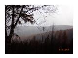 Туман...  Просмотров: 62 Комментариев: