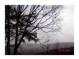 Туман...  Просмотров: 64 Комментариев: