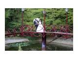 Свадьба Фотограф: gadzila  Просмотров: 620 Комментариев: 0