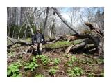 Весна на болоте, а Человек, на Природе! Фотограф: viktorb  Просмотров: 863 Комментариев: 0