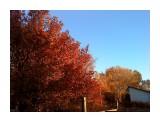 осень в поселке..  Просмотров: 2137 Комментариев: