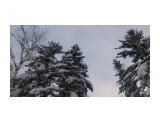Зима на перевале.. Фотограф: vikirin  Просмотров: 1019 Комментариев: 0