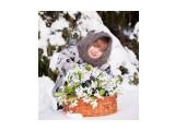 Название: Весна идёт, весне дорогу :) Фотоальбом: Дети всё равно, что цветы. Категория: Дети  Просмотров: 127 Комментариев: 0