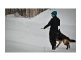 Название: 8 Фотоальбом: Праздник Немецкой Овчарки Категория: Животные Фотограф: Chuhraj  Просмотров: 817 Комментариев: 0