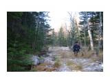 IMGP2748 Течет ручей в лесу! А я по лужку иду! 30.10.jpg сах Фотограф: viiktorb  Просмотров: 519 Комментариев: 0