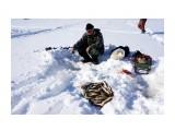 Субботняя рыбалка Фотограф: vikirin  Просмотров: 911 Комментариев: 0
