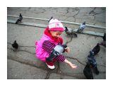 Ручные сизари Фотограф: vikirin  Просмотров: 2161 Комментариев: 0