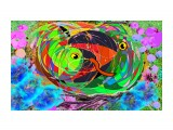 гнездо 1 кормление птенца кукушки  Просмотров: 120 Комментариев: 0