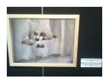 Название: Фото3809 Фотоальбом: фото выставка  в музее .Гималаи ,тибет Категория: Туризм, путешествия  Время съемки/редактирования: 2017:04:16 10:16:05 Фотокамера: Nokia - 5130c-2    Просмотров: 433 Комментариев: 0