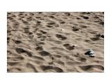 Песок накалился.. весь берег как печка... Фотограф: vikirin  Просмотров: 1624 Комментариев: 0