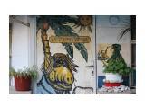 Название: Дом Фотоальбом: Путешествия  Болгария, Вьетнам и т.д. Категория: Туризм, путешествия  Время съемки/редактирования: 2016:11:01 19:59:44 Фотокамера: Canon - Canon EOS 550D Диафрагма: f/4.5 Выдержка: 1/800 Фокусное расстояние: 75/1   Описание: На стене дома в Поморие. Городок не большой но постройки дорог времен социализма, промышленности никакой, туризм. Живут не очень.  Просмотров: 393 Комментариев: 0