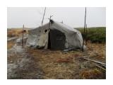 vikirin: Пастухи-оленеводы жили в палатках