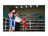 Турнир по боксу Юность Сахалина 2013 -Долинск  Просмотров: 1031 Комментариев: