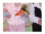 Морковка своими руками  Просмотров: 28 Комментариев: