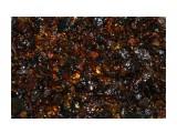 Сияние сахалинского янтаря  Просмотров: 404 Комментариев: 0