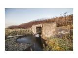 Японский мостик по дороге к камням ( с дороги не виден)  Просмотров: 350 Комментариев: