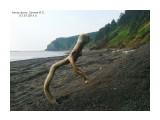 Прогулки по берегу моря.  Просмотров: 214 Комментариев: 0