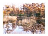 Название: старица Фотоальбом: Разное Категория: Природа Фотограф: Чубарова Нина  Время съемки/редактирования: 2011:10:08 16:48:54 Фотокамера: Panasonic - DMC-TZ4 Диафрагма: f/4.5 Выдержка: 10/800 Фокусное расстояние: 105/10 Светочуствительность: 100   Просмотров: 3406 Комментариев: 0