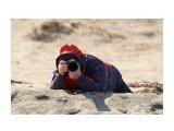 Настоящий ФотоОхотник )) Фотограф: VictorV  Просмотров: 1197 Комментариев: 1