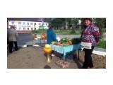 DSC_0746 Фотограф: vikirin  Просмотров: 441 Комментариев: 0